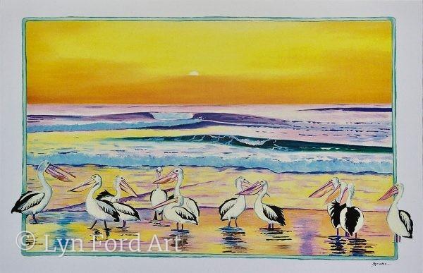Pelicans, Australia