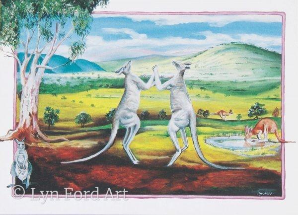 Male Eastern Grey Kangaroos Australia