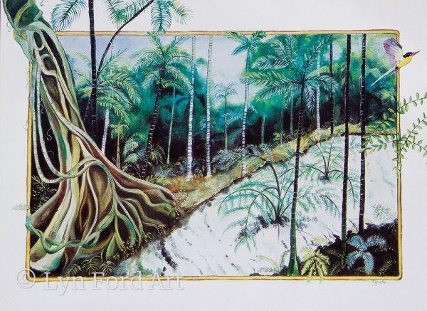 Wanggoolba Creek, Fraser Island, QLD