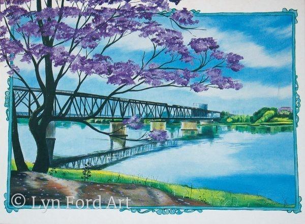 Jacarandas, Grafton, NSW